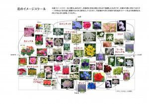 c_chart3